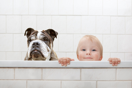small child and a dog in a bathtub